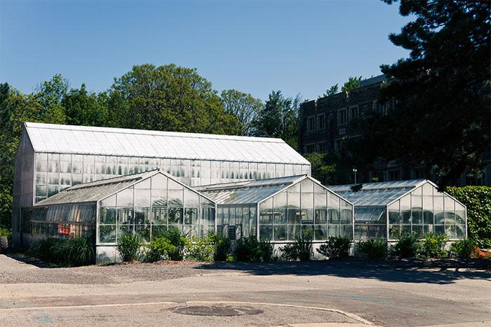 Greenhouse - McMaster Science | Virtual Tour on
