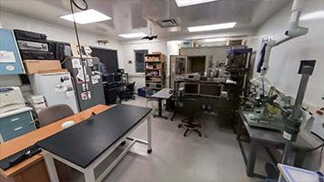 BAT LAB - McMaster Science   Virtual Tour Exercise Rooms In Bats on room in box, room in tree, room in order, room in boat, room in buffalo, room in bed, room in bag, room in car, room in heart, room in house,